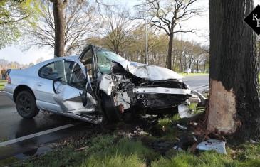 Automobilist botst tegen boom langs N65 Udenhout
