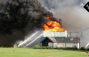 20.000 varkens komen om bij brand in stal Erichem