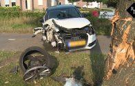Automobiliste ramt boom Duinweg Drunen