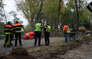 Fietser (77) overleden bij boomrooi werkzaamheden in Hilvarenbeek
