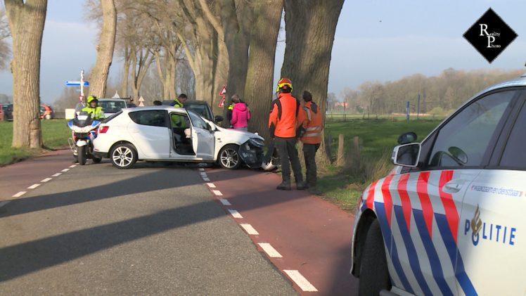 Inhaalmanoeuvre eindigt tegen boom Bergsche Maasdijk Bern