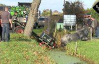 Paard met wagen belandt in sloot Elshout